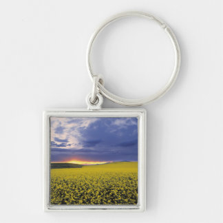 USA, Idaho, Swan Valley. A fiery sunset erupts Silver-Colored Square Key Ring