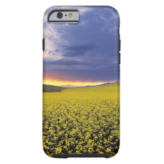 USA, Idaho, Swan Valley. A fiery sunset erupts Tough iPhone 6 Case