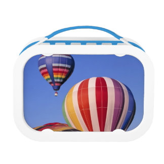 USA, Idaho, Teton Valley. Colorful hot-air Lunch Box