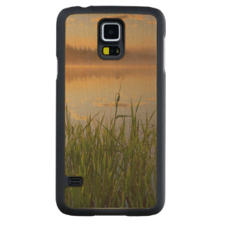 USA, Idaho, Winchester Lake State Park, Lapwai Carved Maple Galaxy S5 Case