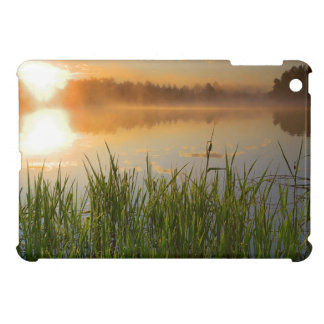 USA, Idaho, Winchester Lake State Park, Lapwai Cover For The iPad Mini