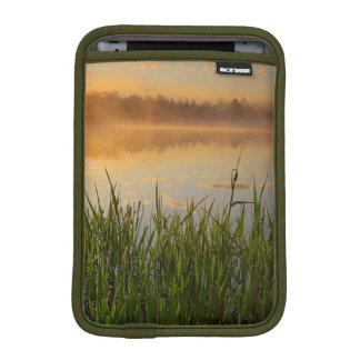 USA, Idaho, Winchester Lake State Park, Lapwai iPad Mini Sleeve