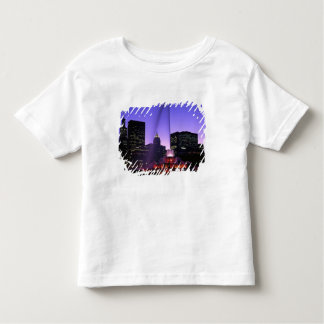 USA, IL, Chicago. Buckingham Fountain in Grant Toddler T-Shirt