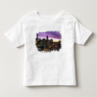 USA, IL, Chicago. Chicago skyline and river T Shirt