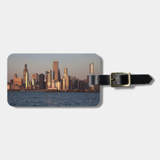 USA, Illinois, Chicago, City skyline over Lake 2 Bag Tag