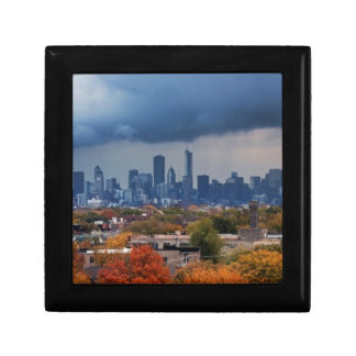 USA, Illinois, Chicago, cityscape Gift Box