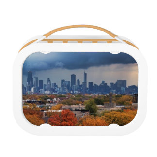 USA, Illinois, Chicago, cityscape Lunch Box