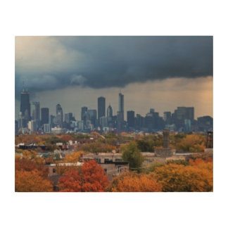 USA, Illinois, Chicago, cityscape Wood Print