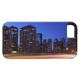 USA, Illinois, Chicago iPhone 5 Covers