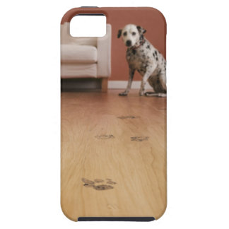USA, Illinois, Metamora, Close-up of floor with Case For The iPhone 5