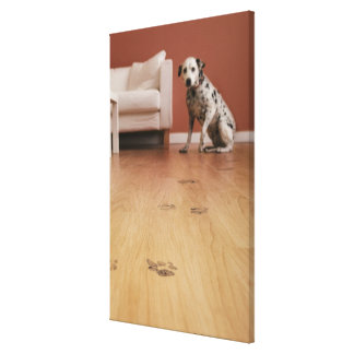 USA, Illinois, Metamora, Close-up of floor with Gallery Wrapped Canvas