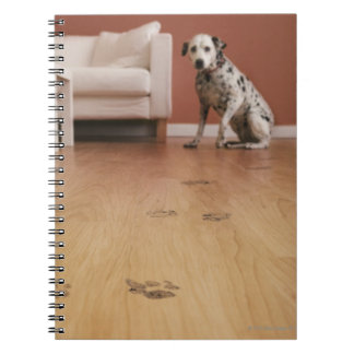 USA, Illinois, Metamora, Close-up of floor with Notebook