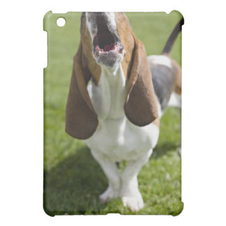 USA, Illinois, Washington, Portrait of Bassett iPad Mini Cover