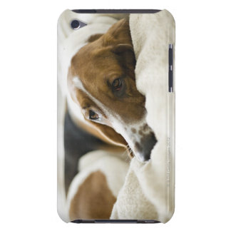 USA, Illinois, Washington, Portrait of Bassett iPod Case-Mate Case