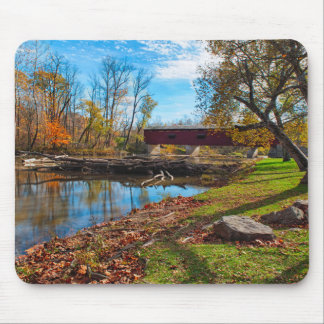 USA, Indiana, Cataract Falls State Recreation Mouse Mat