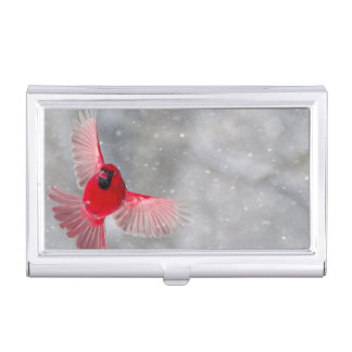 USA, Indiana, Indianapolis. A male cardinal Business Card Holder