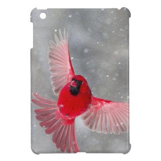 USA, Indiana, Indianapolis. A male cardinal Cover For The iPad Mini