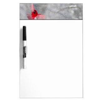 USA, Indiana, Indianapolis. A male cardinal Dry Erase Board
