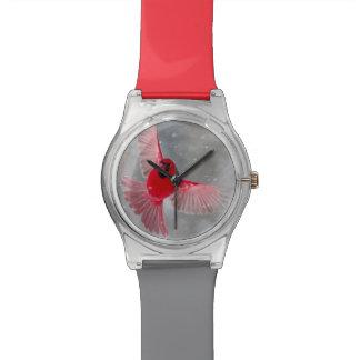 USA, Indiana, Indianapolis. A male cardinal Wrist Watches