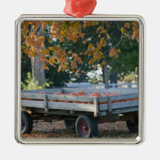 USA, IOWA, Madison County, Winterset: Howell's Christmas Ornament