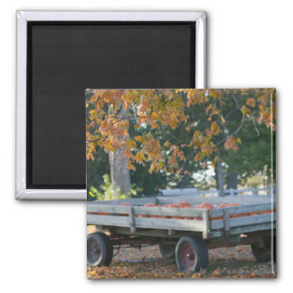 USA, IOWA, Madison County, Winterset: Howell's Square Magnet