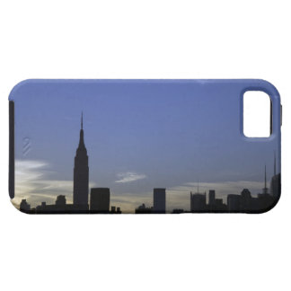 USA iPhone 5 CASE