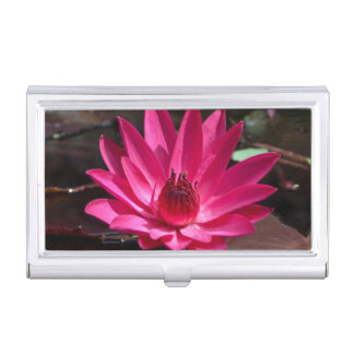 USA, Kansas, Bright Red Water Lilly Business Card Holders