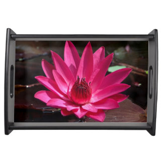 USA, Kansas, Bright Red Water Lilly Serving Tray