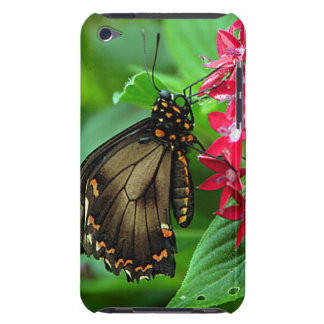 USA, Kansas, Butterfly On Red Flowers Barely There iPod Covers
