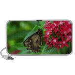 USA, Kansas, Butterfly On Red Flowers Travel Speaker