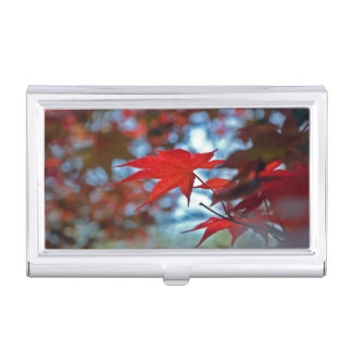 USA, Kansas. Fall Colors Business Card Holder