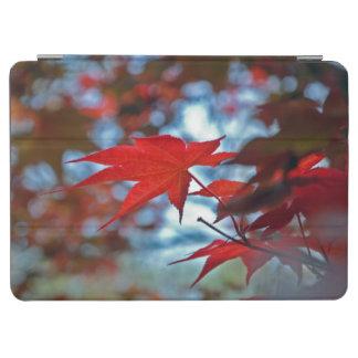 USA, Kansas. Fall Colors iPad Air Cover