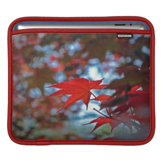 USA, Kansas. Fall Colors iPad Sleeve
