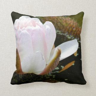 USA, Kansas, Light Pink Water Lilly Blooming Throw Pillow
