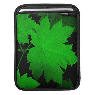 USA, Kansas, Oak Leaves In The Light iPad Sleeve