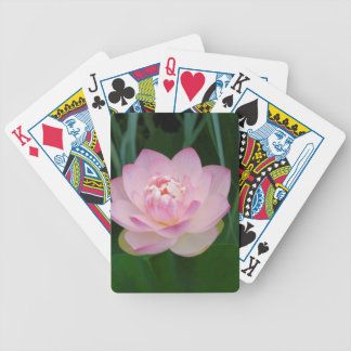 USA, Kansas, Pink Water Lilly Bicycle Playing Cards