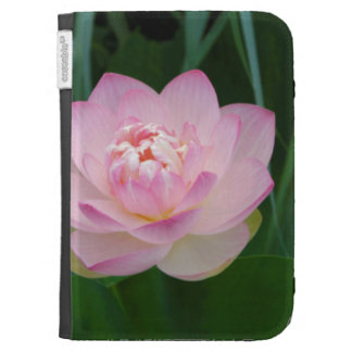 USA, Kansas, Pink Water Lilly Kindle 3G Cover