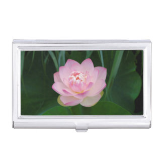 USA, Kansas, Pink Water Lilly Case For Business Cards