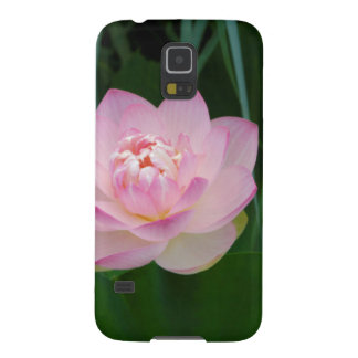 USA, Kansas, Pink Water Lilly Cases For Galaxy S5