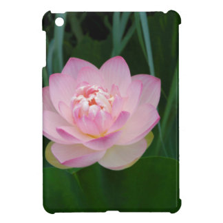 USA, Kansas, Pink Water Lilly Case For The iPad Mini