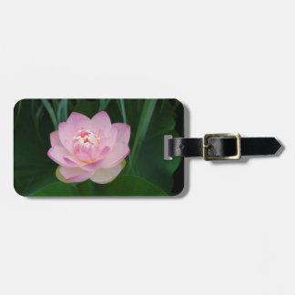 USA, Kansas, Pink Water Lilly Luggage Tag