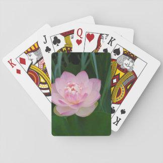 USA, Kansas, Pink Water Lilly Playing Cards
