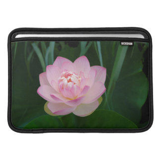USA, Kansas, Pink Water Lilly Sleeves For MacBook Air