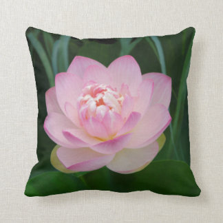 USA, Kansas, Pink Water Lilly Throw Pillow