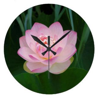 USA, Kansas, Pink Water Lilly Wallclocks