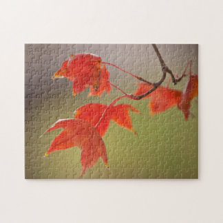 USA, Kansas, Red Leaves In Early Fall Jigsaw Puzzle