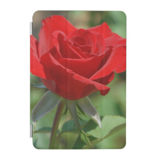 USA, Kansas, Red Rose iPad Mini Cover