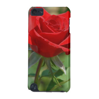 USA, Kansas, Red Rose iPod Touch 5G Covers