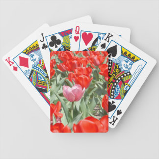 USA, Kansas, Red Tulips With One Pink Tulip Bicycle Playing Cards