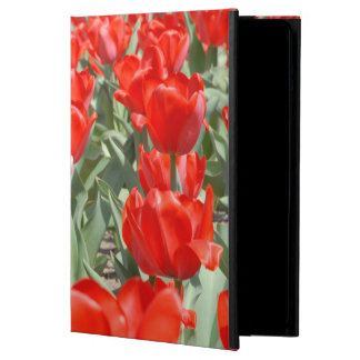 USA, Kansas, Red Tulips With One Pink Tulip iPad Air Cover